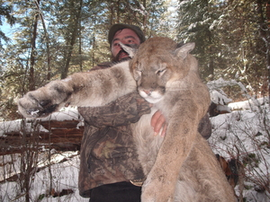 Montana Lion Hunts