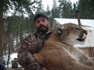 Hunt Mountain Lions